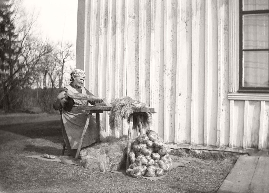 Hilma Gustafsson heckle flax at the cabin end. She represents one of favorite environments. From there are many lovingly and painstakingly rendered images that describes key elements of the work on a farm like that a hundred years ago.