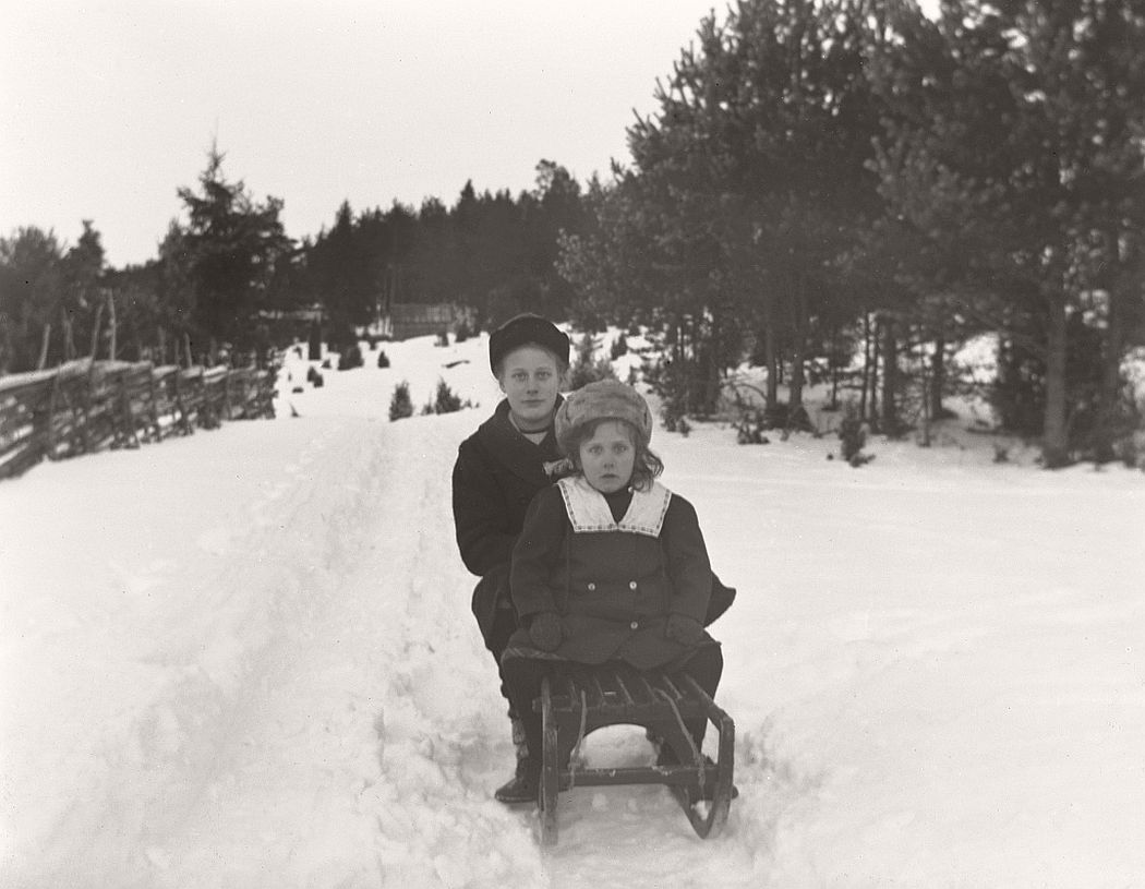 In this photo, at the back of the sledge is Elin Larsson Tingersten (b. 1902) from Arla in Frinnaryd and her younger sister Svea (b. 1909). The girls were daughters of Crown hunters Larsson.