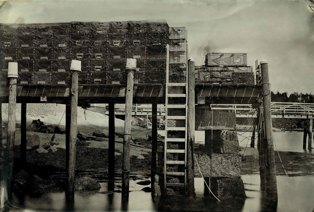 © Andrew Crane: Atipodean Isles