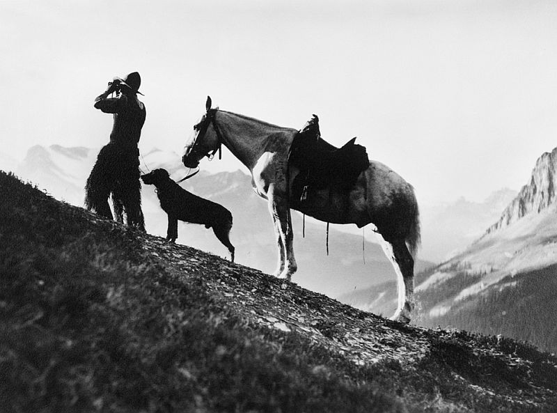 Cowboy with horse and dog on top of Burgess Pass, British Columbia, 1914