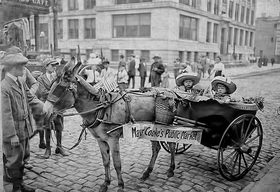 Donkey cart - Hoboken Mayor Cooke's Public Market (Demerest High School in the background), ca. 1912-15