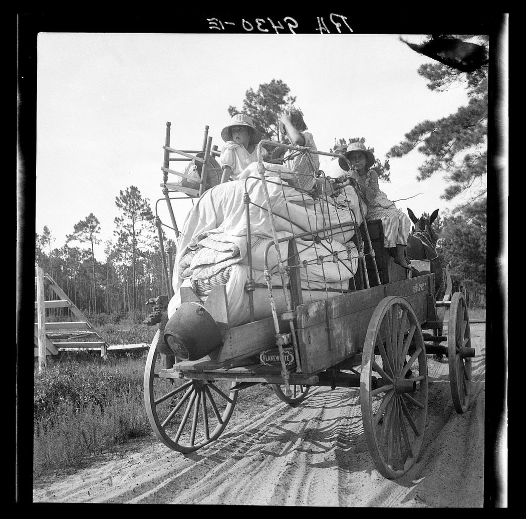 Moving day in the turpentine pine forest country. North Florida, 1936.