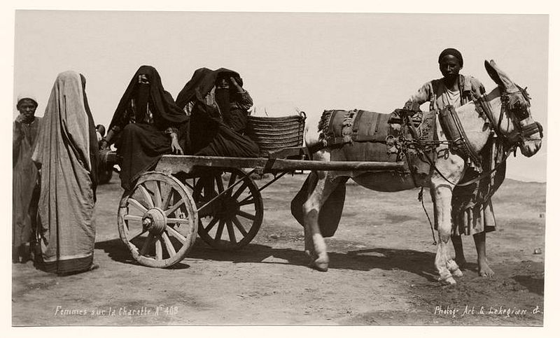 Women with their donkey cart