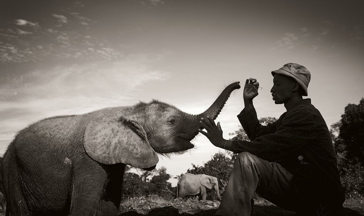 © Elephants in Heaven by Joachim Schmeisser, published by teNeues, www.teneues.com, Tiny baby with its keeper at the nursery, Nairobi National Park 2013, Photo © 2017 Joachim Schmeisser