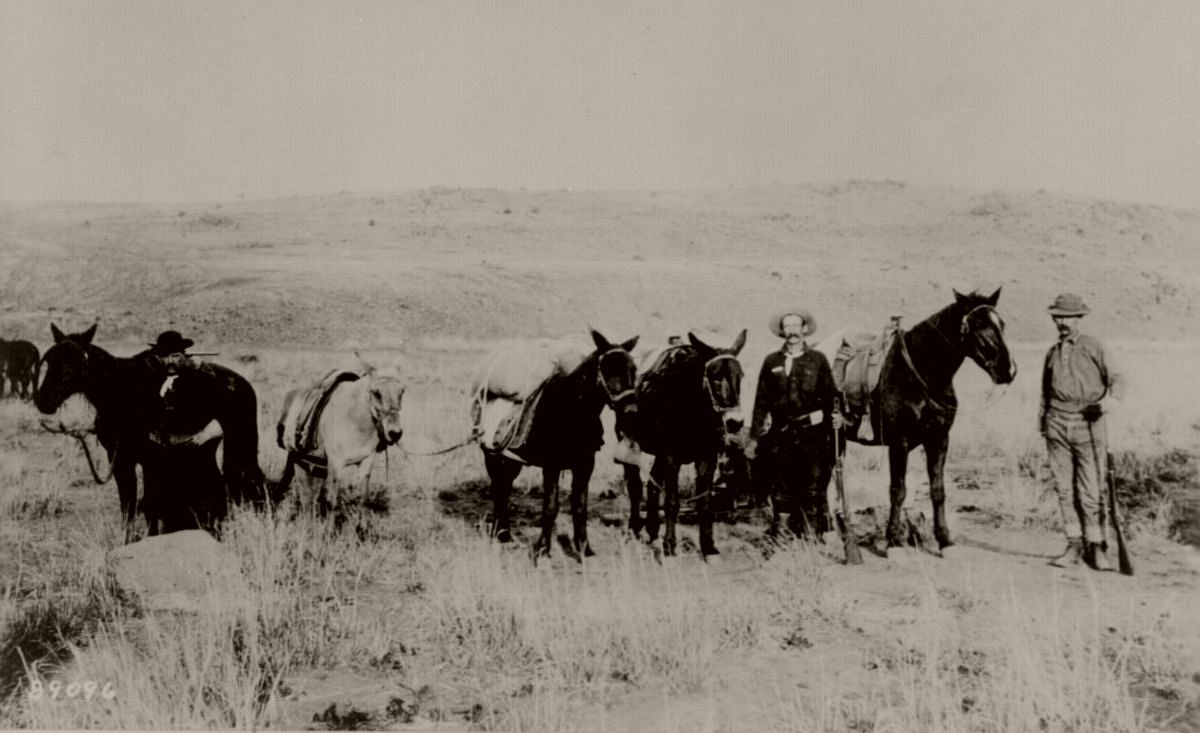 Government pack mules and packers. Photograph taken near Mexican border, 1883.