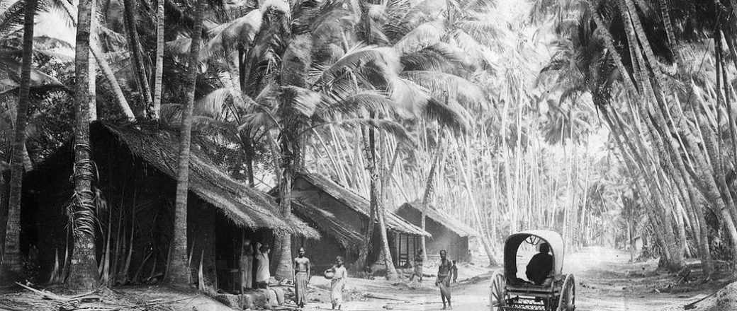 Vintage: Everyday Life of Ceylon (Sri Lanka) in the 1880s