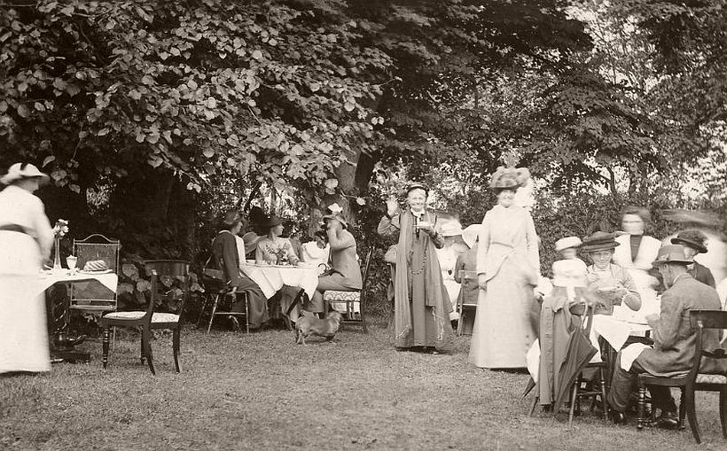 People in a garden party