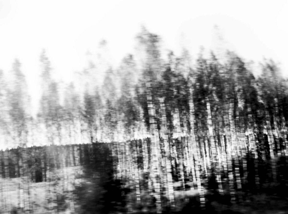 © Camilla Jensen: Quantum