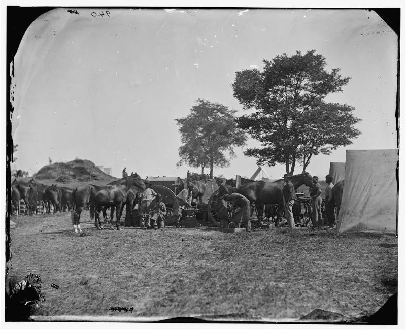 Blacksmith shoeing horses at headquarters, Army of the Potomac