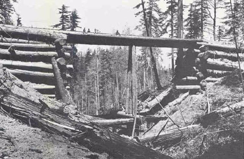 A home-made log bridge. The men sitting atop it give an idea of its height, and the diameter of the redwood logs used for construction.