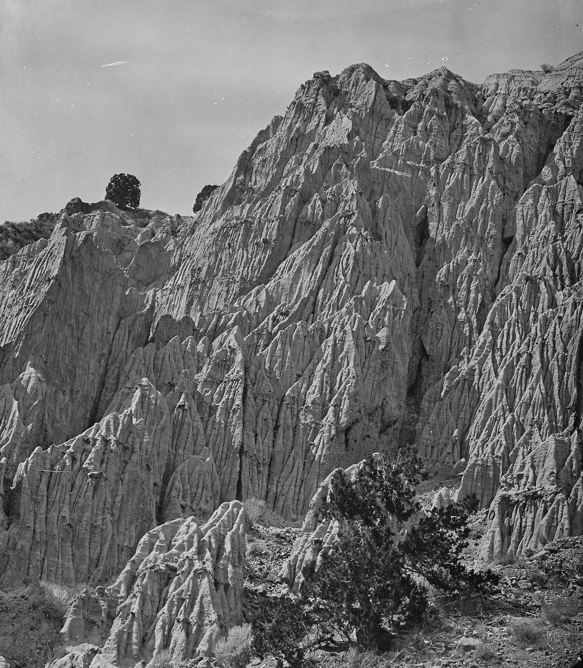 Salt Creek Canyon, Utah