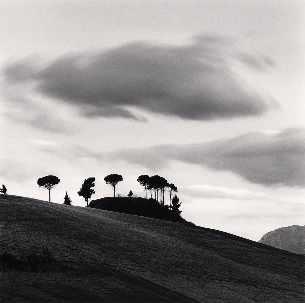 Michael Kenna, Pine Tree at Dusk, Loreto, Aprutino, Abruzzo, Italy, 2016