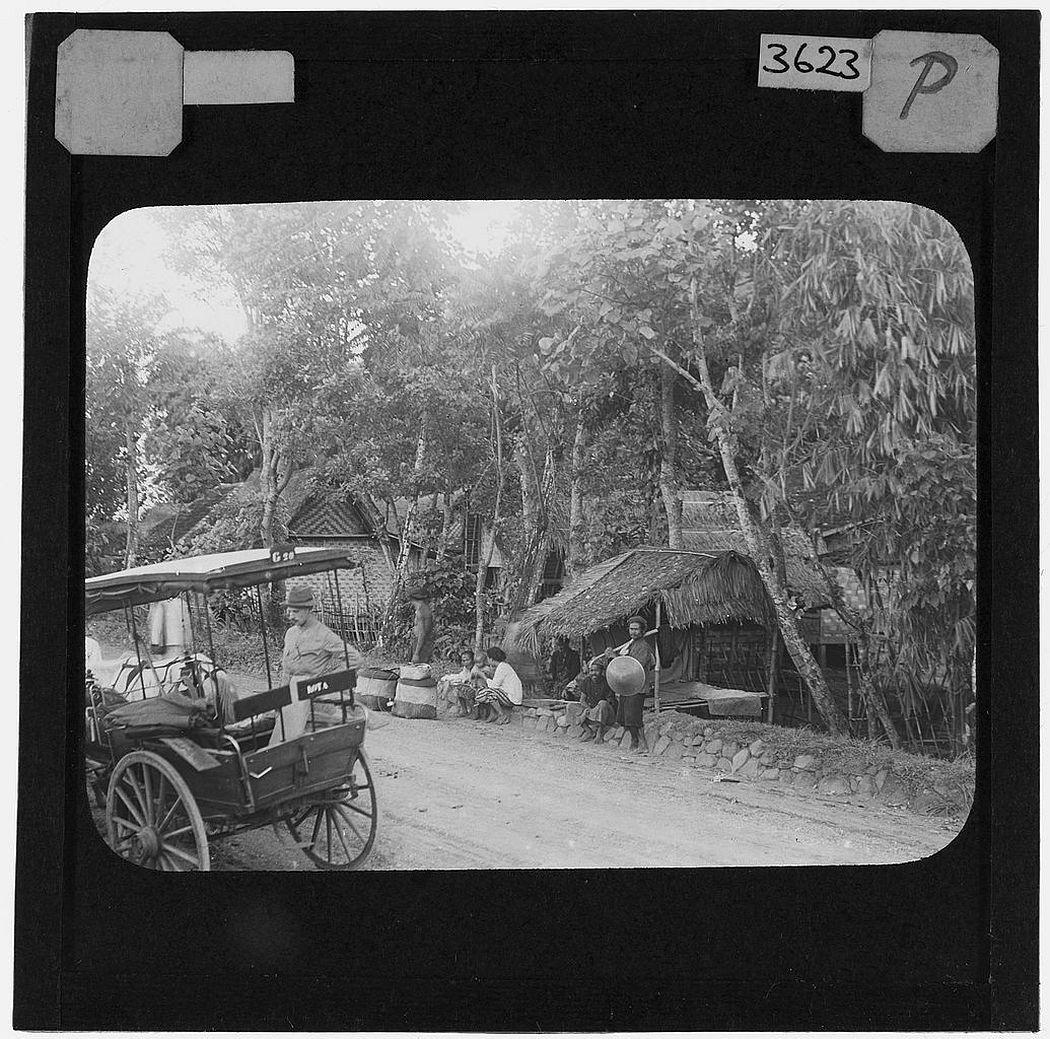 Roadside view Papandayang, Java (1913)