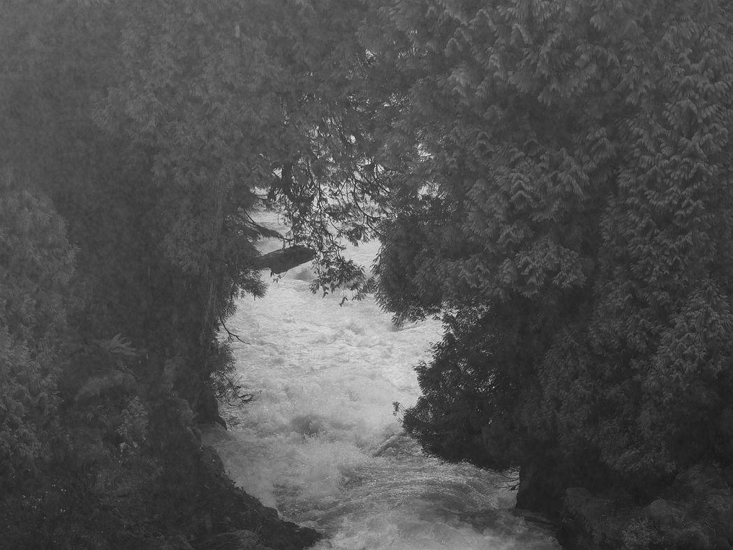 River, 2017