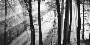 Interview with Large Format / Landscape photographer Roman Loranc