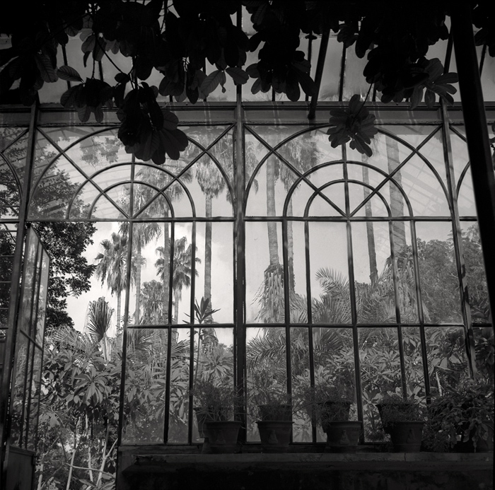 © Dominique Bollinger The garden - Palermo - 1995