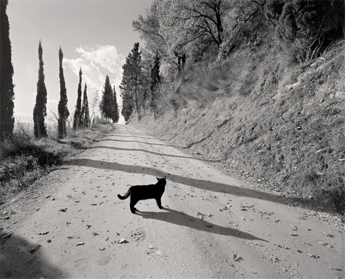 © Dominique Bollinger Tuscany 3 - 2010