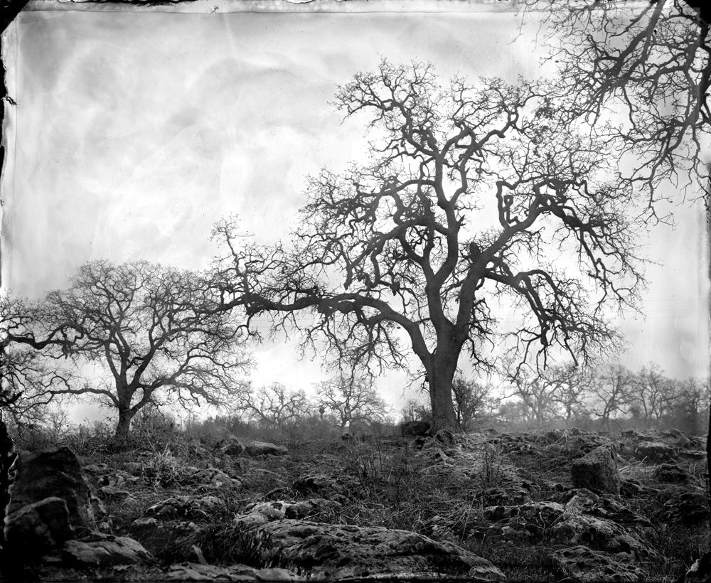 © Ben Nixon Cascade Foothills
