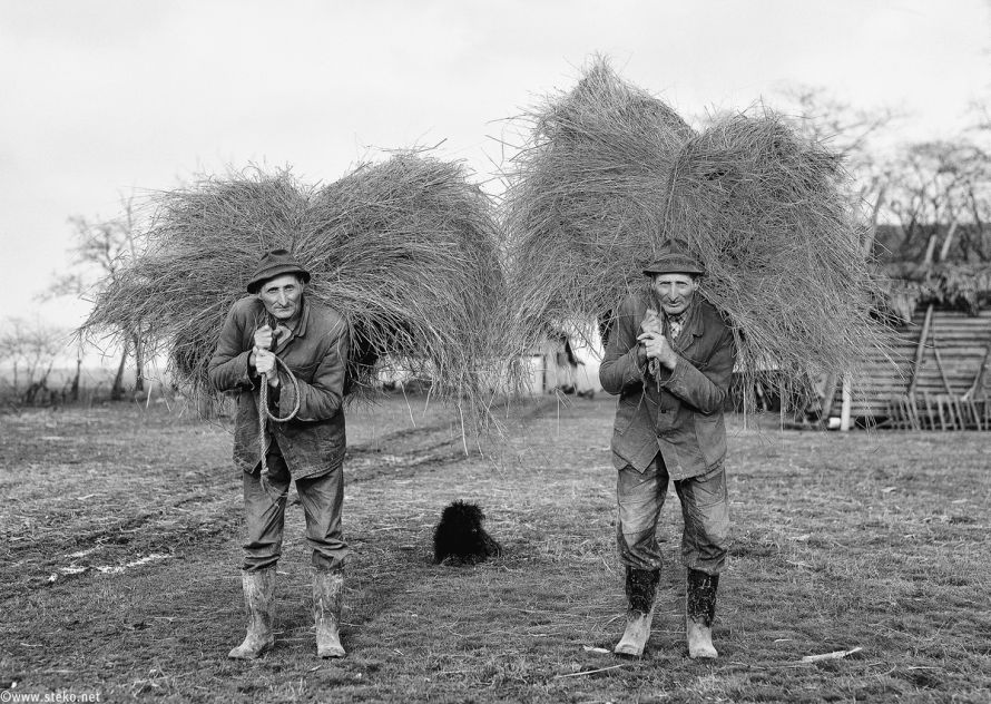 Janos-Stekovics-Twin-Farmers-At-The-End-Of-Their-Lives-11