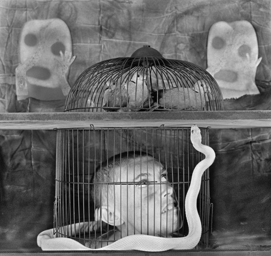 Roger-Ballen-Asylum-of-The Birds-05