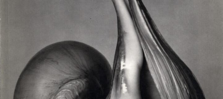 Biography: Edward Weston