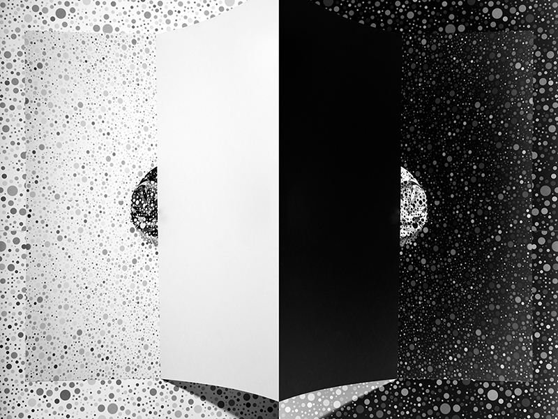 Fragments © Patricia Voulgaris – Abstract Photographer of the Year 2014, 1st place Winner in Abstract, Professional