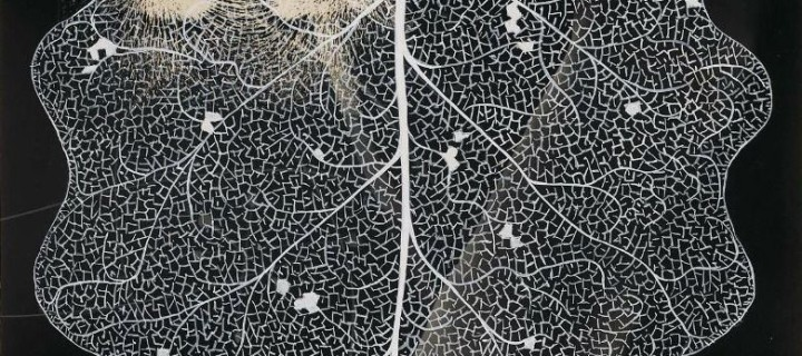 György Kepes – Tate Liverpool