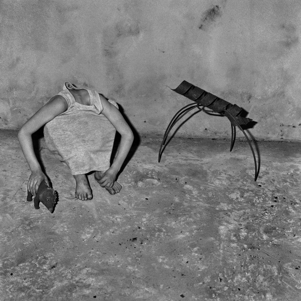 Roger_Ballen-Animal_Abstraction-10