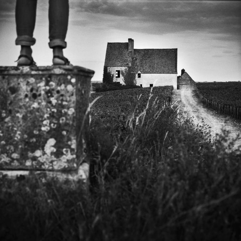 © Jib Peter
