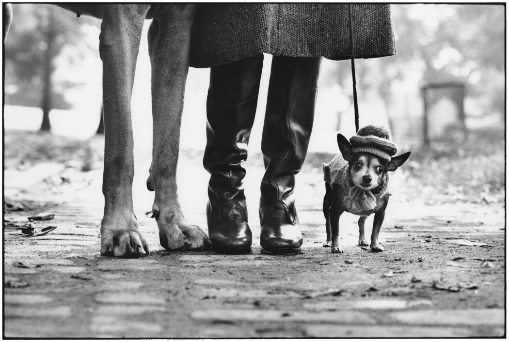 Elliott-Erwitt-Double-Platinum-14