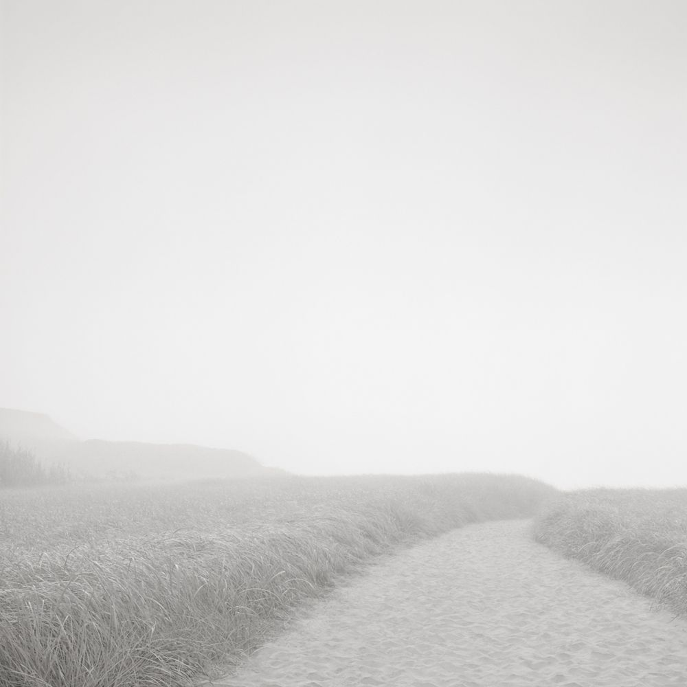 david-fokos-beach path