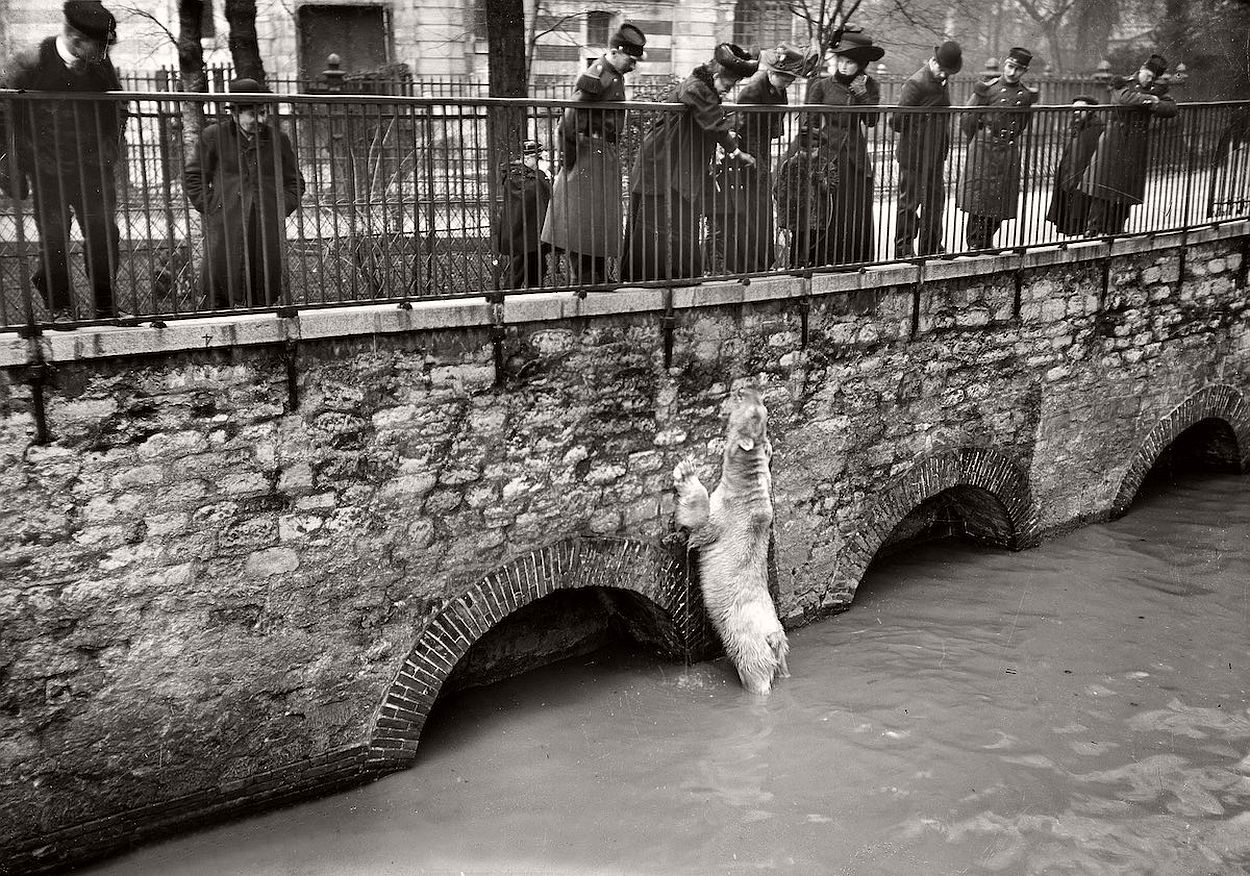 paris-underwater-great-flood-1910-02