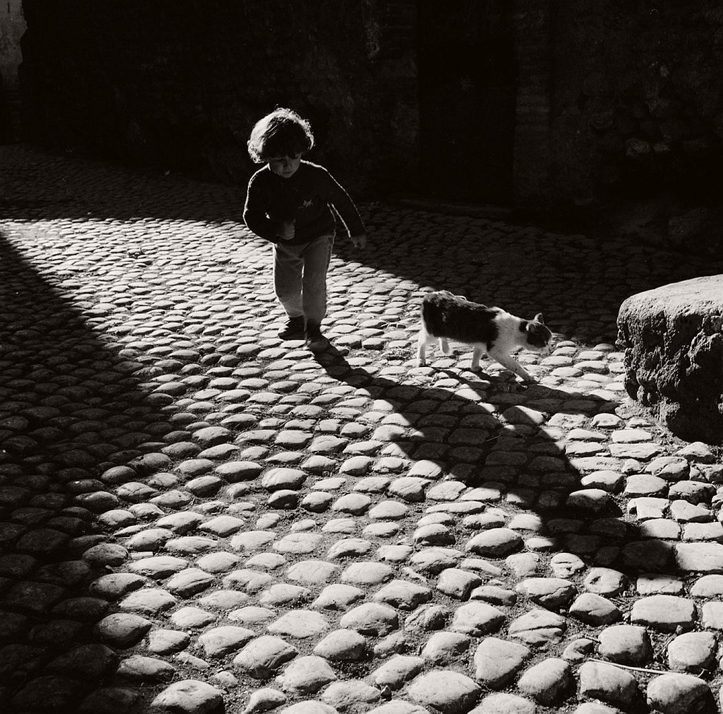 © Bill Perlmutter