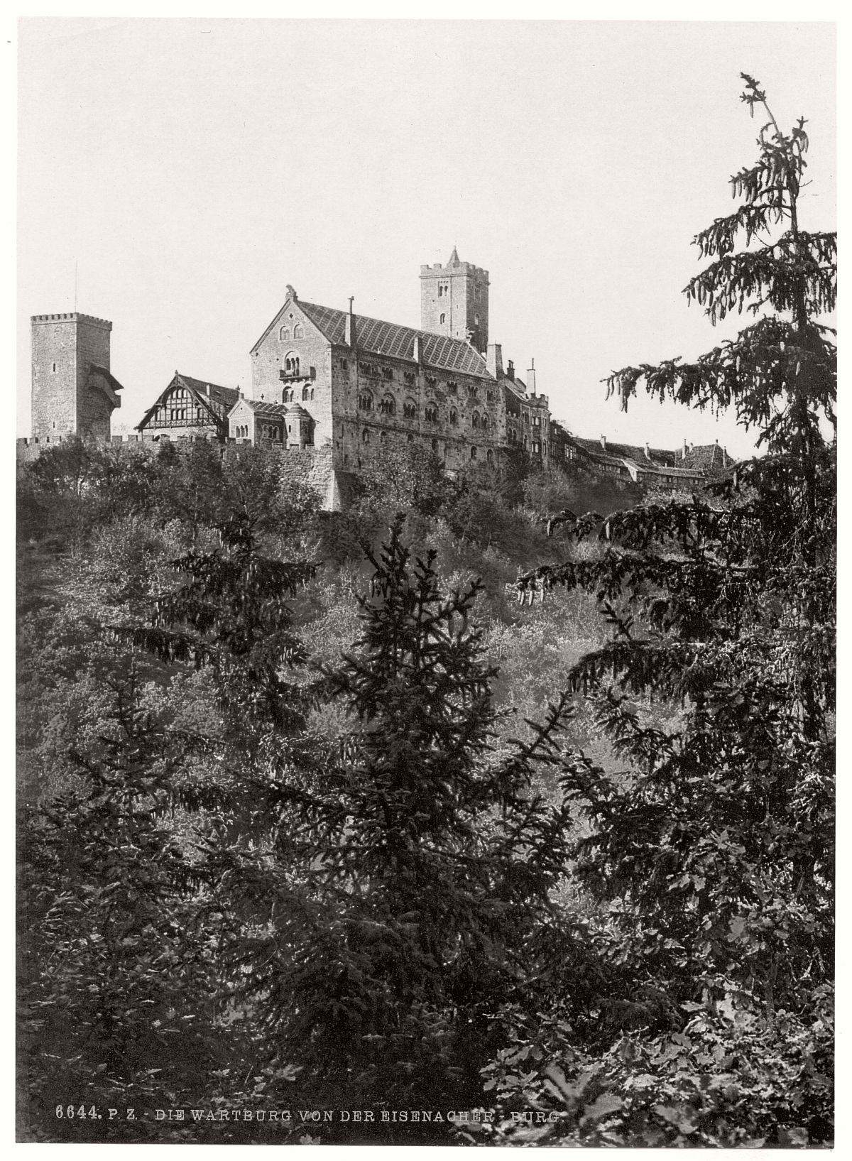 historic-bw-photo-german-Wartburg-castle-15