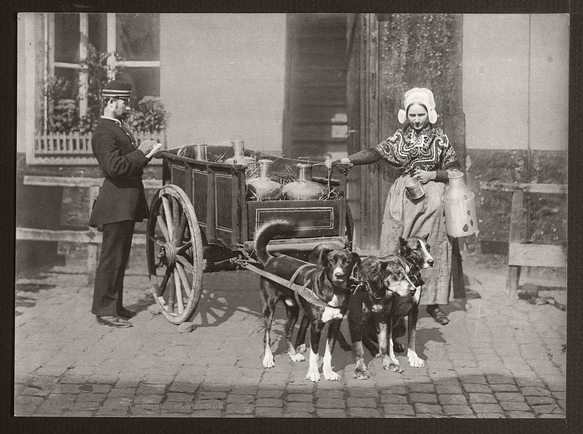 historic-bw-photos-of-antwerp-belgium-in-19th-century-06