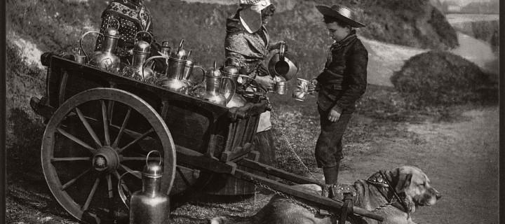 Milk sellers in Brussels, Belgium in the 19th Century
