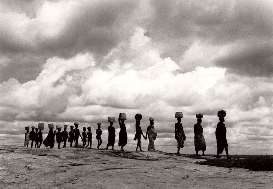SUDAN. Aluma Plateau. 1954. Line of Bari women.