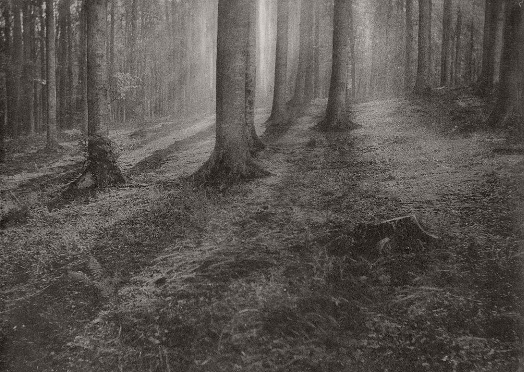 pictorial-photographer-leonard-misonne-01
