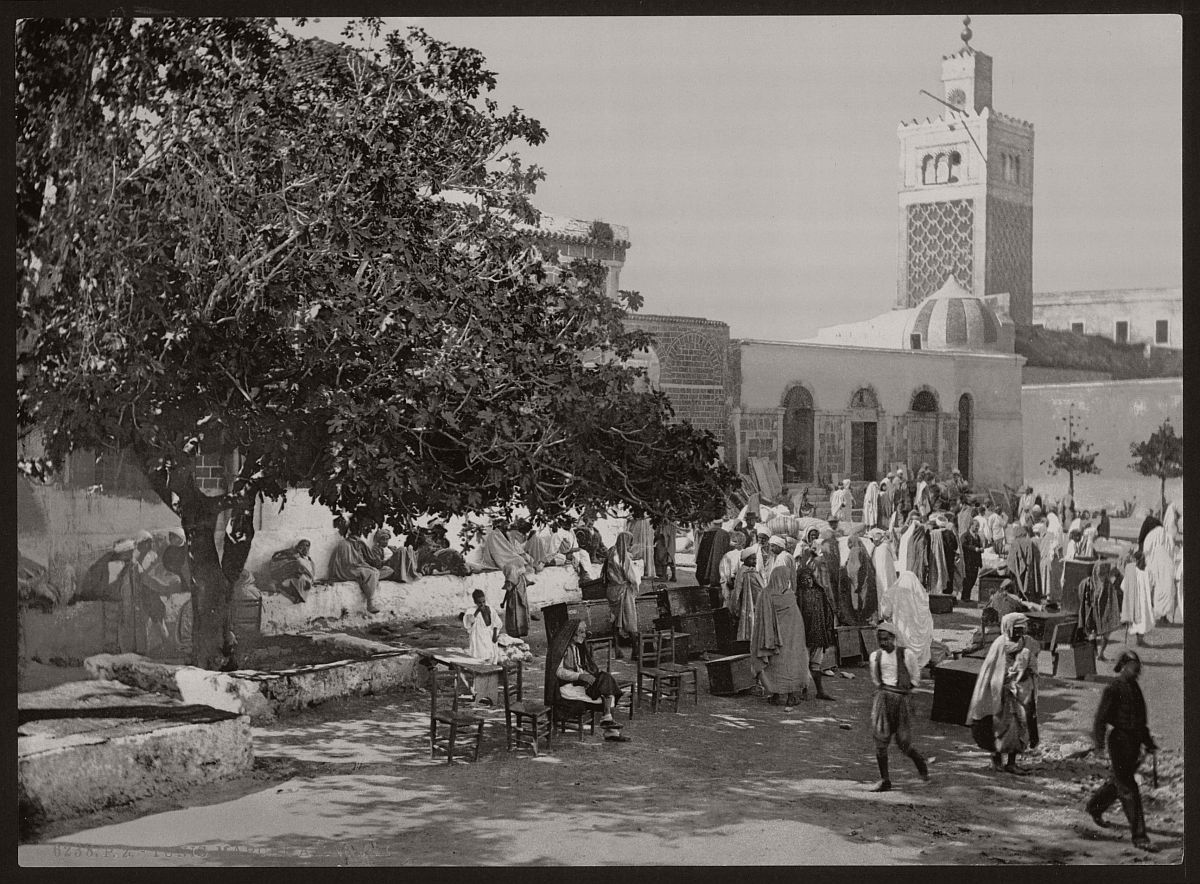 vintage-bw-photos-of-tunis-tunisia-late-19th-century-09