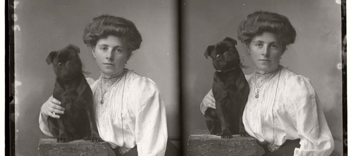 Vintage Glass Plate portraits of Pets (1910s)