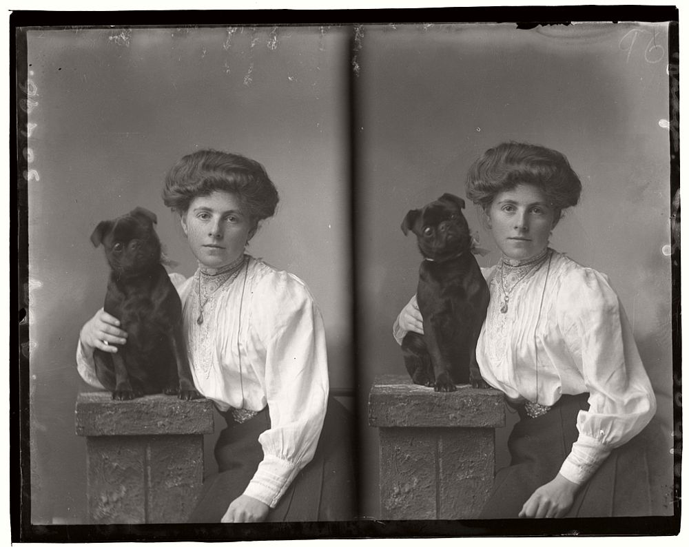 vintage-glass-wet-plate-collodion-portraits-of-pets-1910s-06