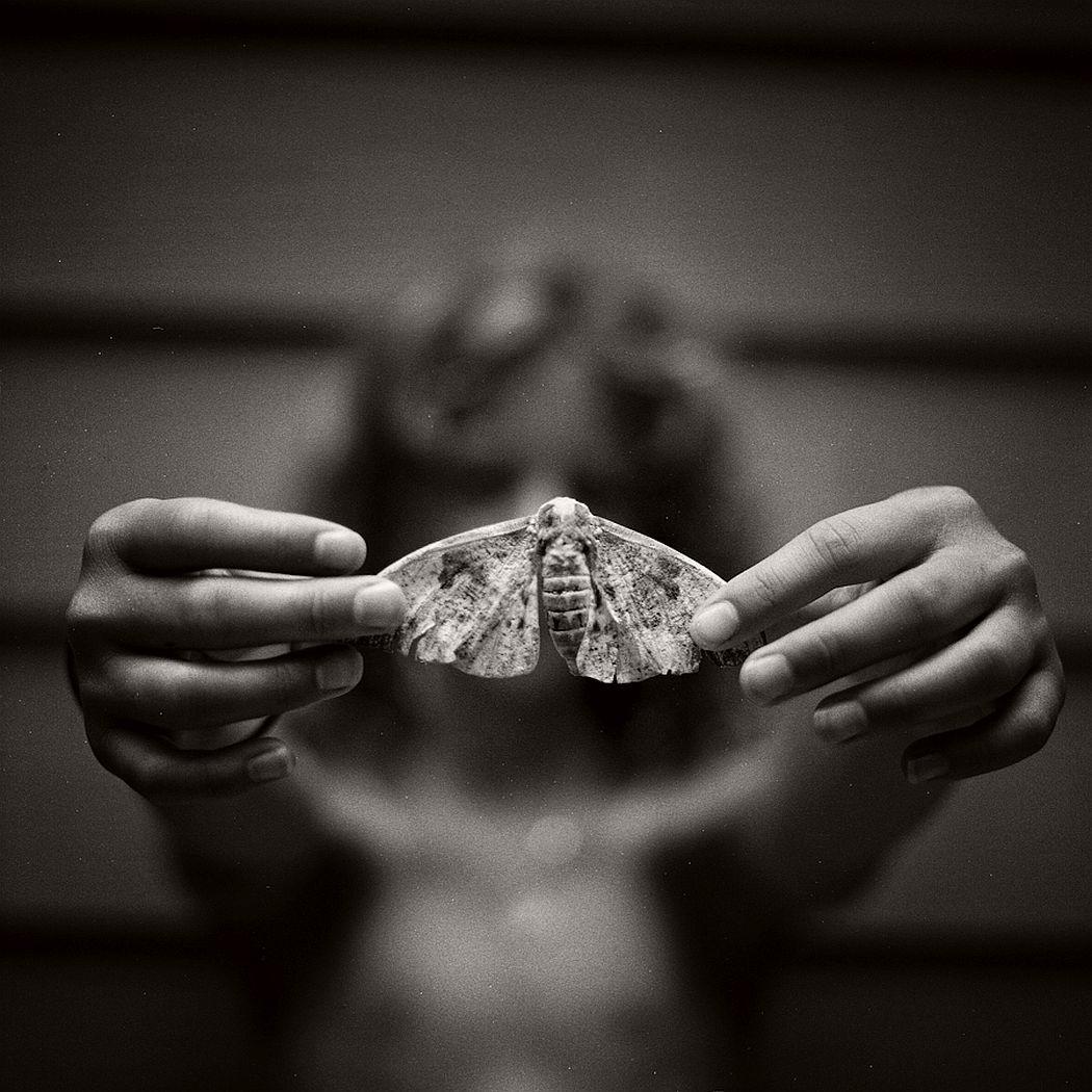 lori-vrba-the-moth-wing-diaries-14