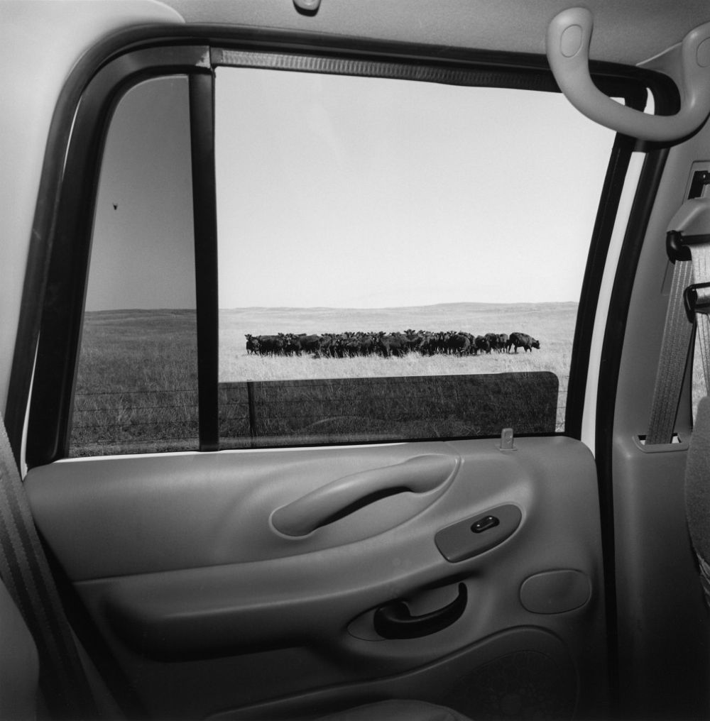 Lee-Friedlander-America-by-Car-08