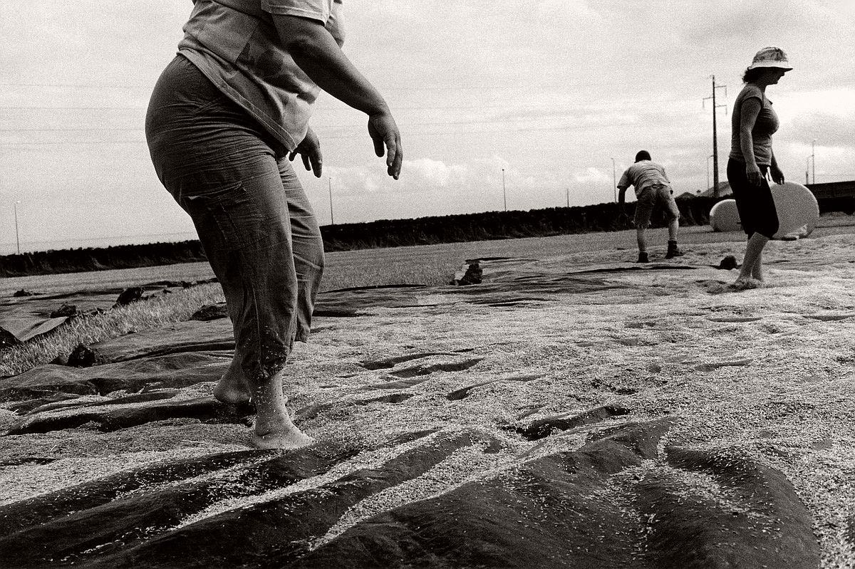paulo-monteiro-documentary-photographer-10