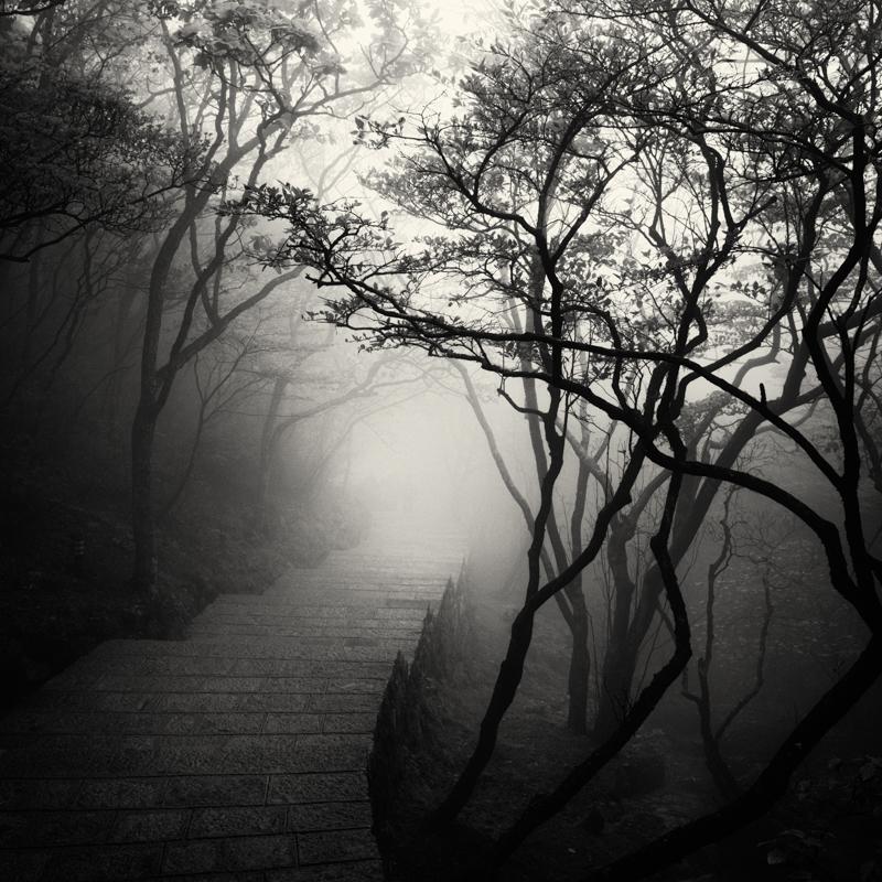 linus-bergman-fine-art-photographer-06