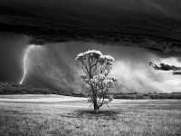 Monochrome Photography Awards 2015 – Winners Gallery