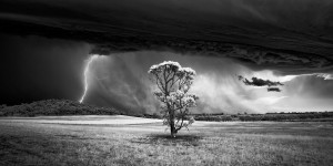 Monochrome Photography Awards 2015 – Winners Gallery