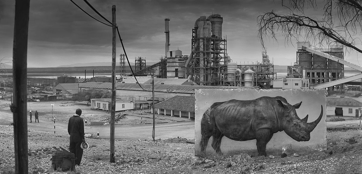 FACTORY WITH RHINO