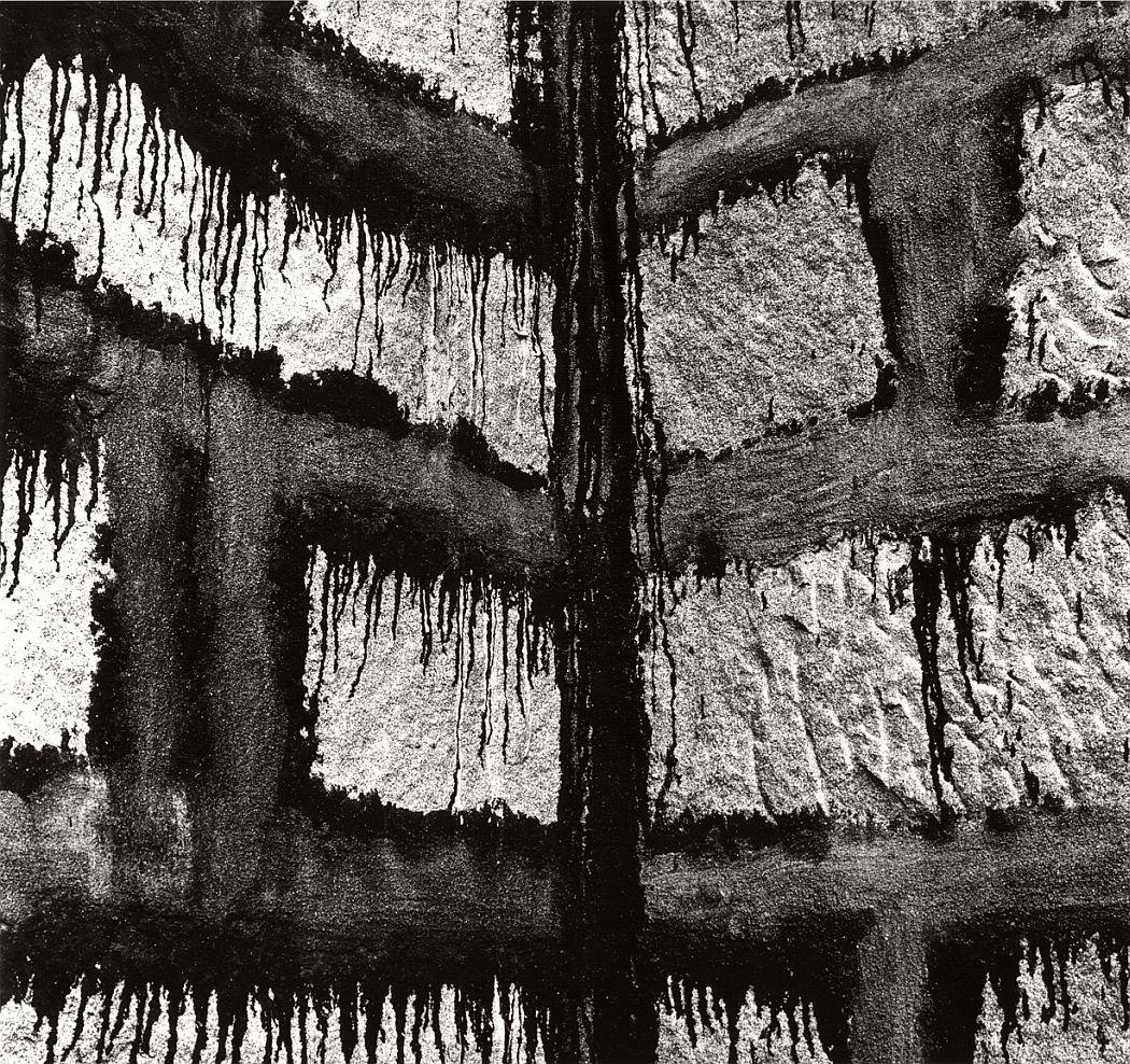 brett-weston-significant-details-01