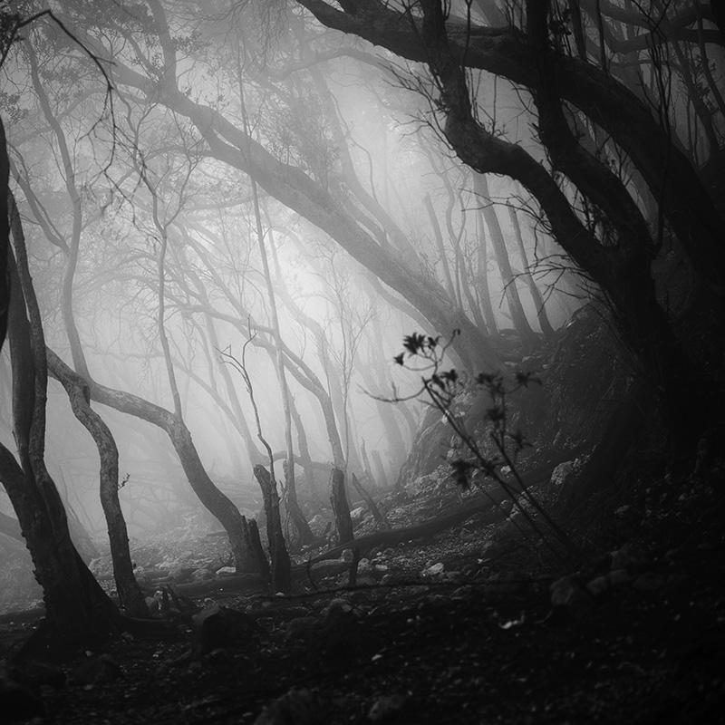 daniel-tjongari-bw-fine-art-landscape-photographer-07